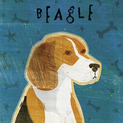 Beagle (square) by John W. Golden