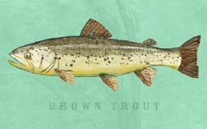 Brown Trout by John W. Golden