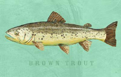 Brown Trout by John W. Golden