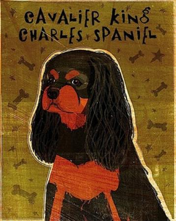 Cavalier King Charles (black and tan) by John W. Golden
