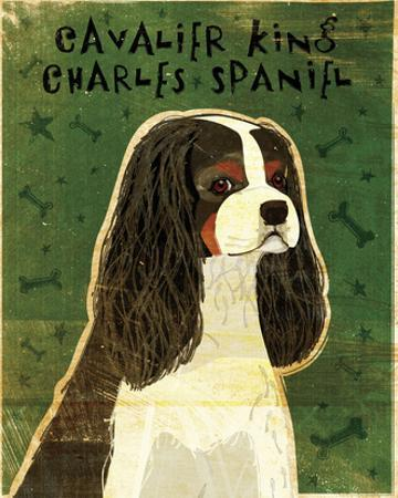 Cavalier King Charles (tri-color) by John W. Golden