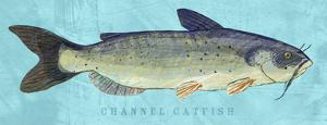 Channel Catfish by John W. Golden