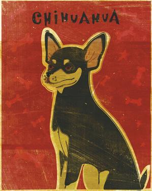 Chihuahua (black and tan) by John W. Golden