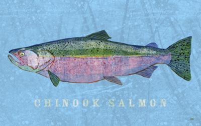 Chinook Salmon by John W. Golden