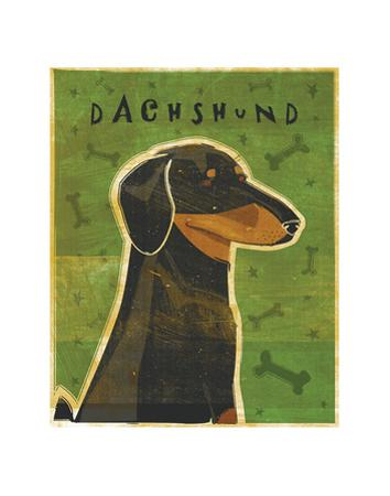 Dachshund (black and tan) by John W. Golden
