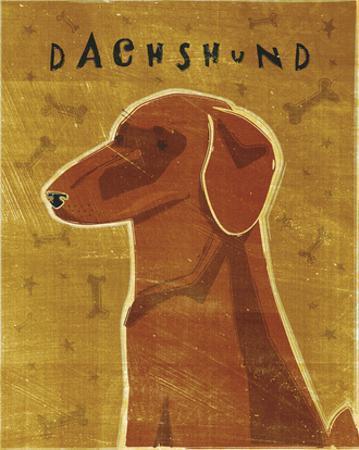 Dachshund (red) by John W. Golden