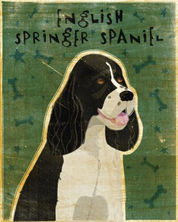 English Springer Spaniel (black and white) by John W. Golden