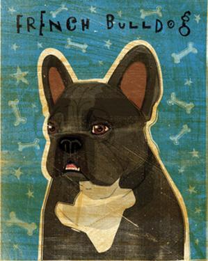 French Bulldog (Black and White) by John W. Golden