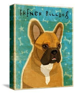 French Bulldog (Fawn & White) by John W. Golden