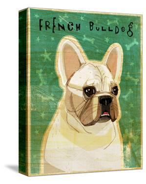 French Bulldog (White) by John W. Golden