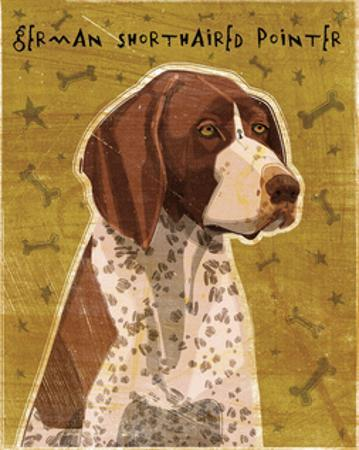 German Shorthaired Pointer by John W. Golden