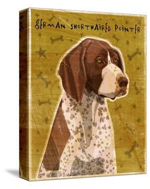 German Shorthaired Pointer by John W. Golden
