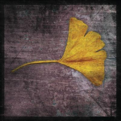 Gingko 4 by John W. Golden