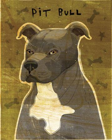 Gray Pit Bull by John W. Golden