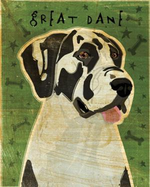 Great Dane (Harlequin, no crop) by John W. Golden