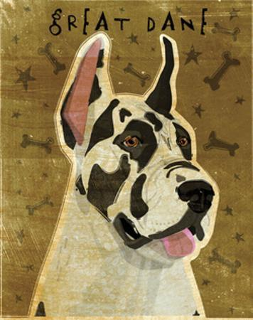 Great Dane (Harlequin) by John W. Golden