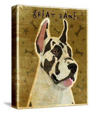 Great Dane (Harlequin) by John W. Golden