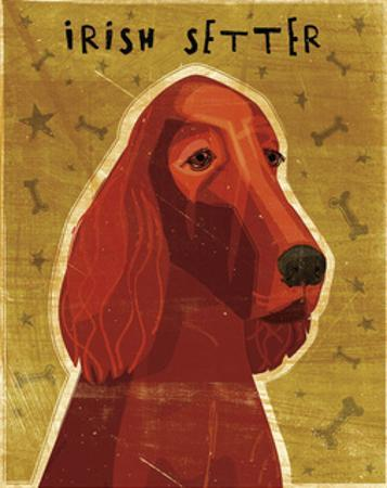 Irish Setter by John W. Golden