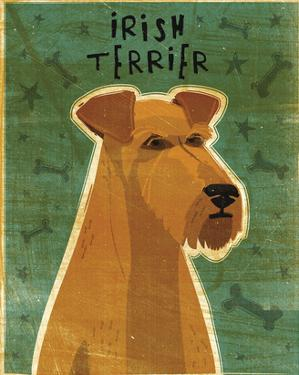 Irish Terrier by John W. Golden