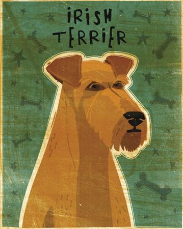 Irish Terrier by John W. Golden