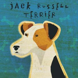 Jack Russell Terrier (square) by John W. Golden