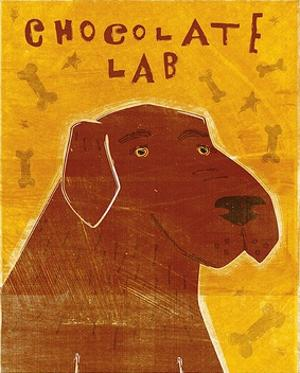 Lab (chocolate) by John W. Golden