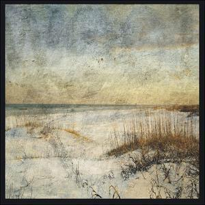 Masonboro Island No. 15 by John W. Golden