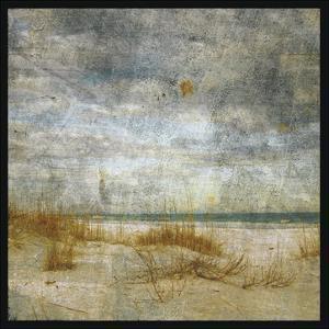 Masonboro Island No. 4 by John W. Golden