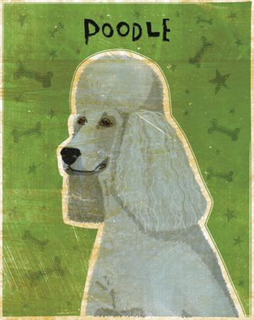 Poodle (grey) by John W. Golden