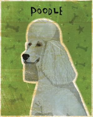 Poodle (grey) by John W. Golden