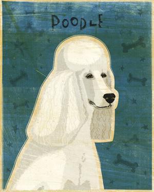 Poodle (white) by John W. Golden