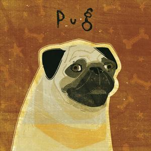 Pug (square) by John W. Golden