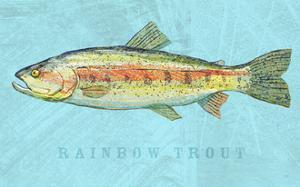 Rainbow Trout by John W. Golden