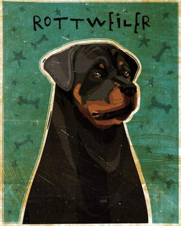 Rottweiler by John W. Golden