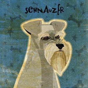 Schnauzer (square) by John W. Golden