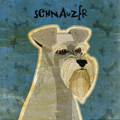 Schnauzer (square) by John W. Golden