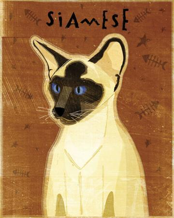 Siamese by John W. Golden