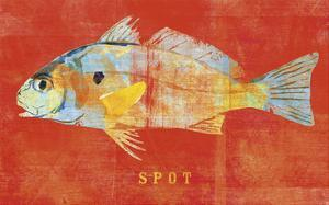 Spot by John W. Golden