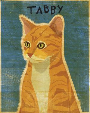 Tabby (orange) by John W. Golden