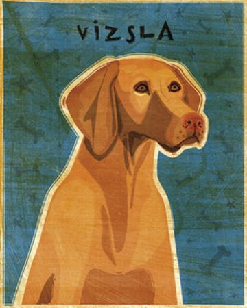 Vizsla by John W. Golden