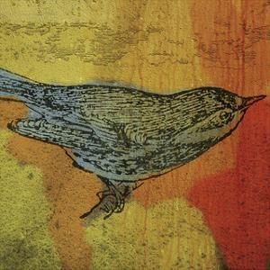 Warbler No. 1 by John W. Golden