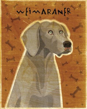 Weimaraner by John W. Golden