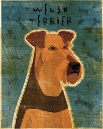 Welsh Terrier by John W. Golden
