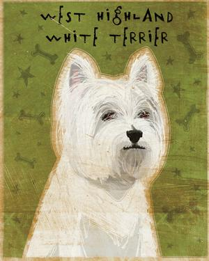 West Highland White Terrier by John W. Golden