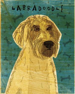 Yellow Labradoodle by John W. Golden