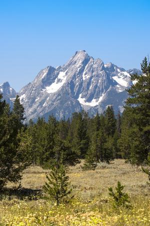 Grand Teton National Park, Teton County, Wyoming, Usa