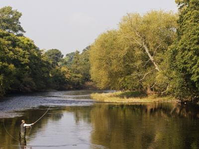 Salmon Fisherman Casting to a Fish on the River Dee, Wrexham, Wales by John Warburton-lee