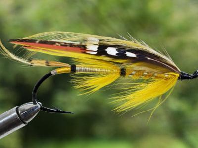 Traditional Salmon Fishing Fly, UK by John Warburton-lee