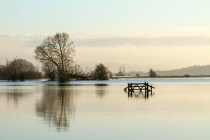 A Solitary Gate in Calm Flood-Waters in Farmland on West Sedgemoor, Near Stoke St Gregory by John Waters