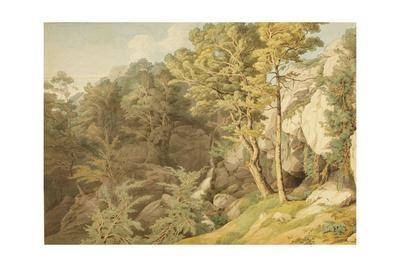 Canonteign, Devon, 1804